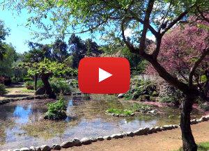 video από το πάρκο